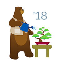 Salesforce Spring 18' Release 1