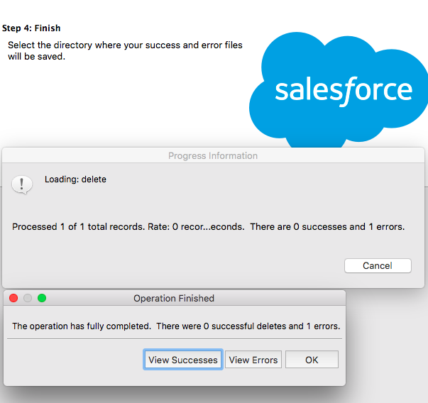 Mass Delete Leads Salesforce With Dataloader - View Successes - Getawayposts.com
